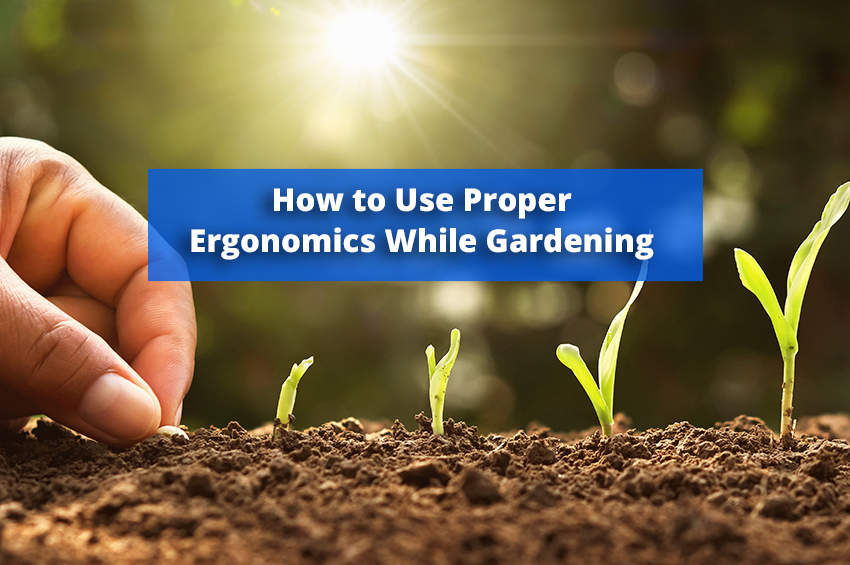How to Use Proper Ergonomics While Gardening